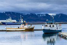 VELKOMIN   IJsland / IJsland, gevormd door de zee en de Vikingen! Geniet van de rust in het adembenemende landschap van geisers, gletsjers en vulkanen. Wie denkt dat IJsland volledig bestaat uit ijs en gletsjers heeft het mis! In de zomer is er juist heel veel groen te vinden.