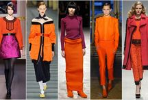 Colour Trend Fall 2013
