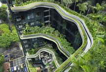 Shadowcrest Roofing: Green Roofs We Love / Green Roofing Ideas!