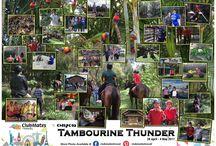 CM17019 Tambourine Thunder