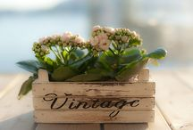 Vintage / by Therese Leiszler