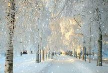 Sníh nebo ZIMA