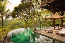 Honeymoons / Looking for the perfect destination