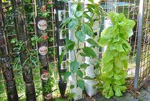 green / inspiering green