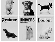 Doggy / by Jacqueline Bauza