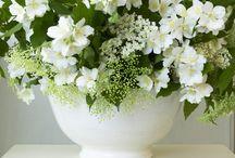 White flowers..... / I love white