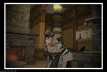 Final Fantasy XIV / Chronique d'une Miquo'te ordinaire.