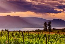 Columbia Valley Wineries / Another alternative is to visit Columbia Valley wineries that are close to other locations that you want to visit while you travel. www.kazzit.com