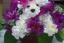 zwierzaki z kwiatów