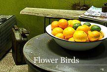 Kolekcja FLOWER BIRDS ze strony www.gdel.pl / Kolekcję Flower Birds tworzą drobne dodatki,  których oryginalność sprawdzi się jako ciekawy akcent  w różnych domowych pomieszczeniach. Salon, jadalnia, przedpokój?  Proszę wybierać, przebierać, zmieniać…