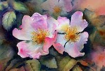 Ann Mortimer - Watercolors