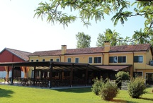 Villa Ferri