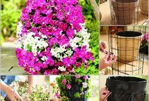 Garten / Garten Ideen Tricks