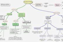 mappa ecosistemi