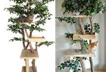 Stromy pro kočky
