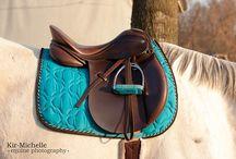 Equini alla moda