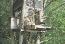 Tree fort ideas for the kids