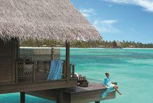 Maldív szgtk