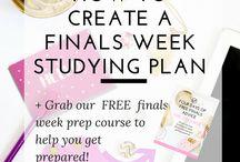 StudyStudy