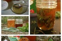 Herbal Remedies / by germaine konate