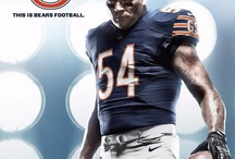 Chicago Bears  / by Michele Shaules