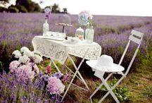 Lavender field bridal shoot