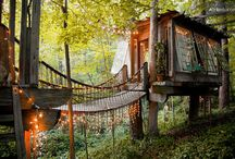 Treehouse Adventures / Best Treehouse Destinations in the world.