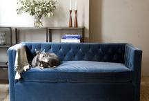 Furniture / by Cameron at Tallulah and Vidalia