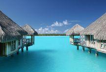 My lovely paradise