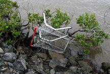 Secret life of shopping trolleys