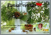PaulaHelenas Blogg