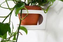 Pentru plante