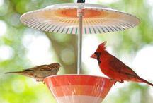 vogel voerbakjes