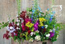 Virág decoráciok