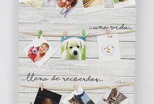 Portafotos originales para regalar con frases. / Los portafotos más originales para colocar fotos con pinzas los tenemos en Decocuit. Y es que cada portafoto tiene una frase diferente para que tu regalos sea especial. Puesdes echar un vistazo en nuestra tienda de regalos y decoración en Burgos, o en nuestra tienda on line www.decocuit.com.