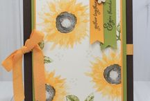 Stampin Up - Painted Harvest