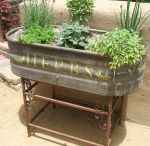 Gardening aspirations