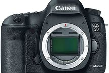 Camera UK / DSLR and Mirrorless. What's your pick?