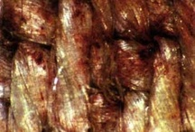 Shroud of Turin / by Mike McVeigh