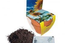 Bahçe Ürünleri / Bahçe Ürünleri Fide, Tohum
