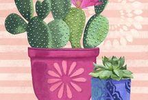 mundo cactus