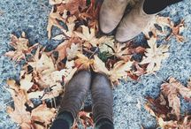 PHOTO - Autumn