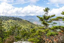 Asheville Blue Ridge Parkway: top 10 hikes to stunning summit views / What a view! Hike our top 10 favorite trails on the Blue Ridge Parkway near Asheville, climbing to some seriously stunning mountaintop views. See the full list: http://ashevilletrails.com/asheville-blue-ridge-parkway-hikes-top-10-views/