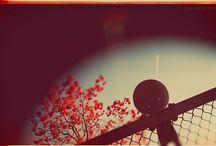 Photography & Illustration