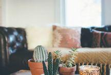 cactus boho