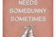 ~ I <3 Bunnies ~ / My favorite animal is bunnies! <3