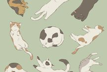 Cats positions
