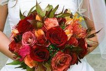 Wedding / Ideas for the wedding