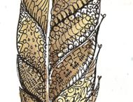 Fantastical Feathers
