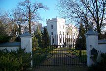 Psie Pole - Pałac